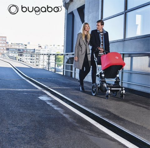 Bugaboo Cameleon day